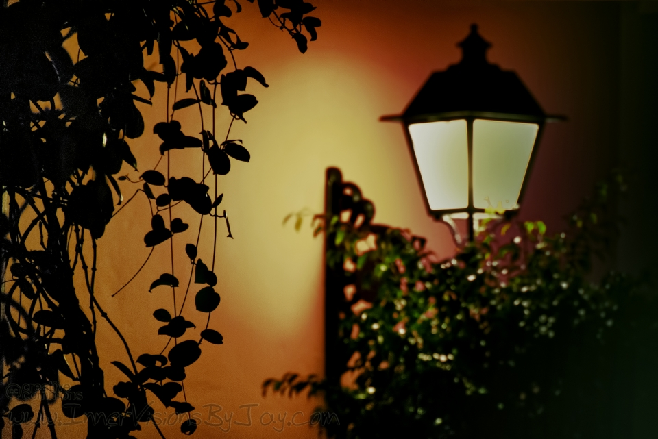 Lamplight in a Mediterranean Night