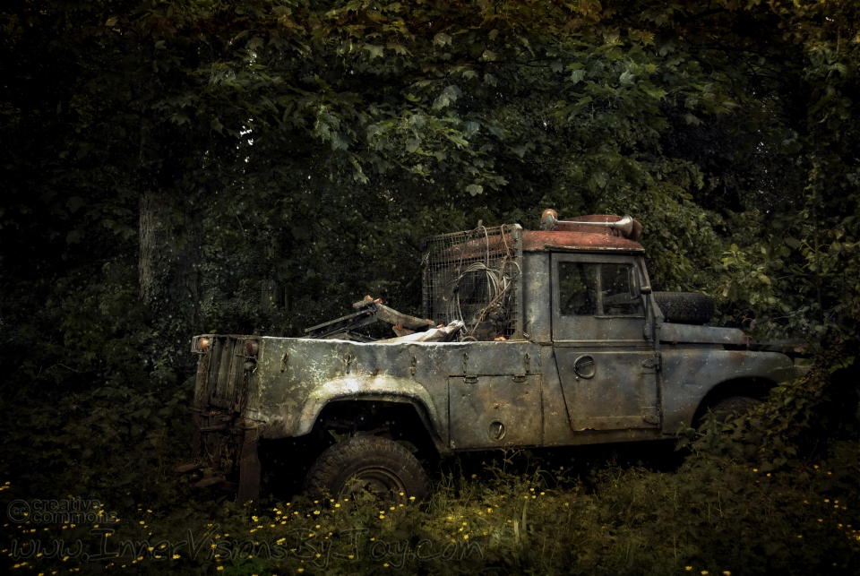 Decomissioned work truck wasting away in the forest